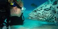 Liveaboard Dive Boat - Cod Hole & Coral Sea image 2