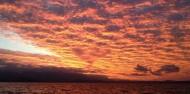 Port Douglas Sunset Sail - Sailaway image 4