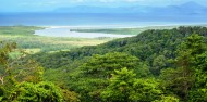Uncle Brians - Cape Tribulation 1 Day Tour image 2