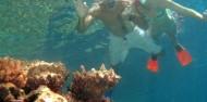 Reef Boat Day Trip - Silverswift image 6