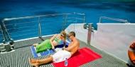 Reef Boat Day Trip - Silverswift image 5