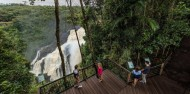 Skyrail Rainforest Cableway image 4