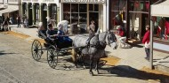 Sovereign Hill Day Tour image 4