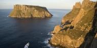 Tasman Island Cruises image 5