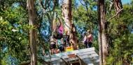 Ziplining - TreeTop Challenge Tamborine Mountain image 4