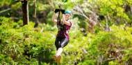 Ziplining - TreeTop Challenge Tamborine Mountain image 1