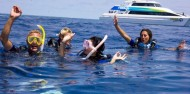 Reef Boat Day Trip - Tusa Dive image 5