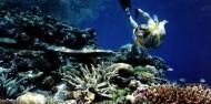 Reef Boat Day Trip - Tusa Dive image 4