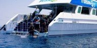 Learn to Dive Course - 4 Days - Pro Dive/Tusa Dive image 4