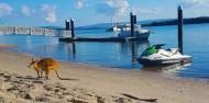 Tandem Parasail with Jet Boat & Jet Ski Combo image 7