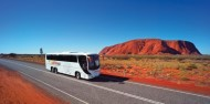Uluru Sunrise & Guided Base Walk image 5