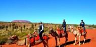 Camel Rides - Uluru Camel Tours image 8