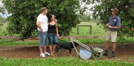 Atherton Tablelands Food Wine & Rainforest Tour - Food Trail Tours image 6
