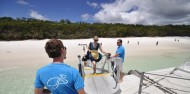 Whitehaven Beach Half Day Adventure - Cruise Whitsundays image 3