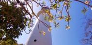 Low Isles Day Trip - Port Douglas - Wavedancer image 6