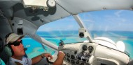 Scenic Flight - Reef and Whitehaven Scenic - Air Whitsunday image 4