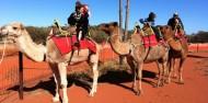 Camel Rides - Uluru Camel Tours image 6