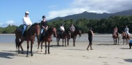 Horse Riding - Cape Tribulation Horse Rides image 2