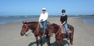 Horse Riding - Cape Tribulation Horse Rides image 7