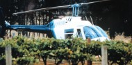 Helicopter Flight - Hunter Valley Luncheon image 1