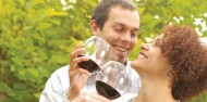 Wine Tours - Hunter Valley Wine Tasting image 1