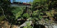Kuranda Railway, Skyrail & Hartley's Crocodile Adventures image 1