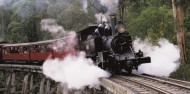 Puffing Billy & Blue Dandenongs image 5
