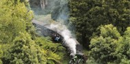 Puffing Billy & Blue Dandenongs image 7