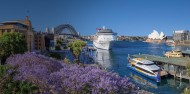 My Fast Ferry - Sightseeing Cruise image 1