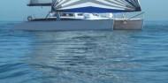 Dolphin Swim - Temptation Sailing image 5