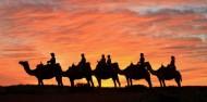 Camel Rides - Uluru Camel Tours image 2
