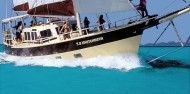 Whitsundays Sailing - 2 days & 1 night - SV Whitehaven image 3