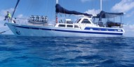 Reef Boat Overnight - Coral Sea Dreaming - Everything Australia