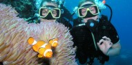 Learn to Dive Course - 5 days - Pro Dive - Everything Australia