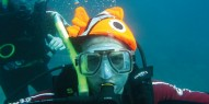 Whitsundays Diving - 3 days & 3 nights - Emperors Wings - Everything Australia