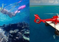 Reef Fly & Cruise Combo - Down Under Cruise & Dive