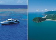 Reef & Cape Tribulation Rainforest Combo