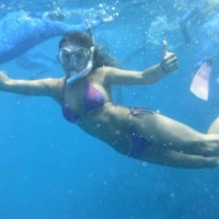 Snorkelling at the GBR