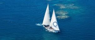 Reef Boat Day Trip - Ocean Free