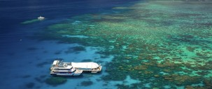 Reef Boat Day Trip - Great Adventures