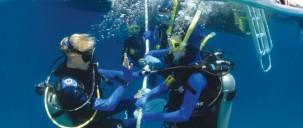 Learn to Dive Course - 4 Days - Port Douglas - Blue Dive