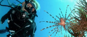 Learn to Dive Course - 3 Days - Reef Encounter