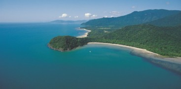 Cape Tribulation & Daintree Rainforest Tour - Everything Cairns