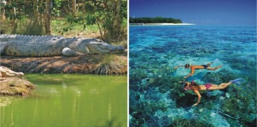 Green Island & Cairns Harbour Cruise Combo - Everything Australia