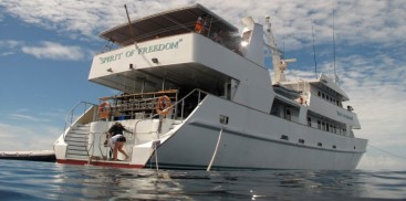 Liveaboard Dive Boat - Cod Hole & Coral Sea - Everything Cairns