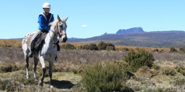 Horse Riding - Cradle Mountain - Everything Australia
