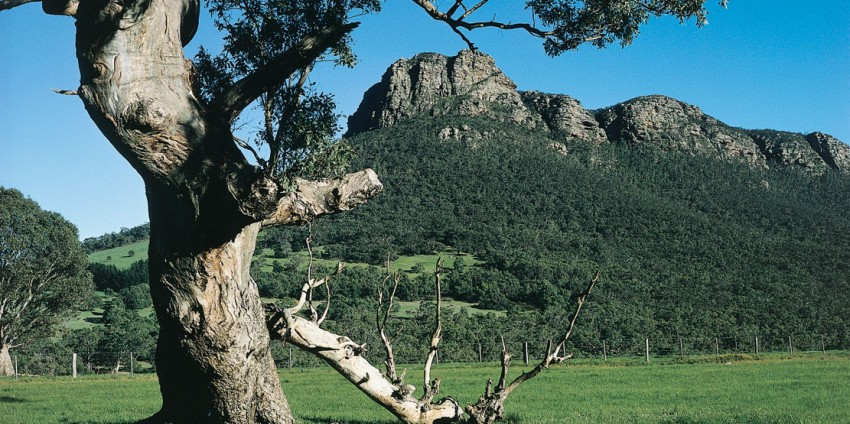 Grampians National Park Day Tour
