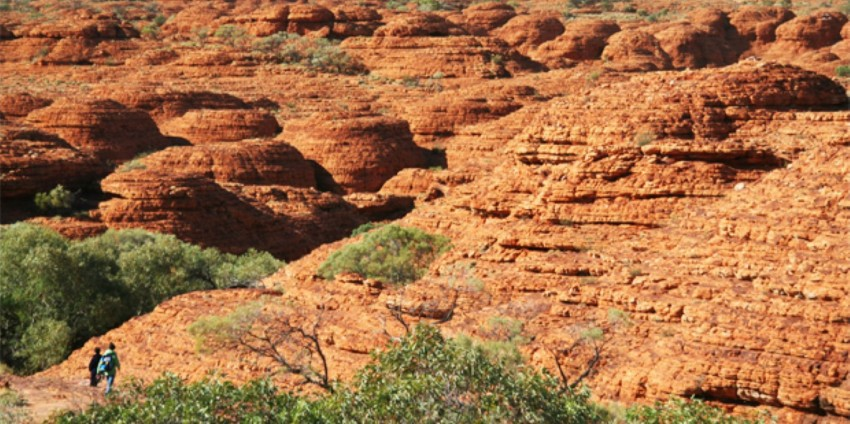 Kings Canyon Day Tour Uluru Everything Australia